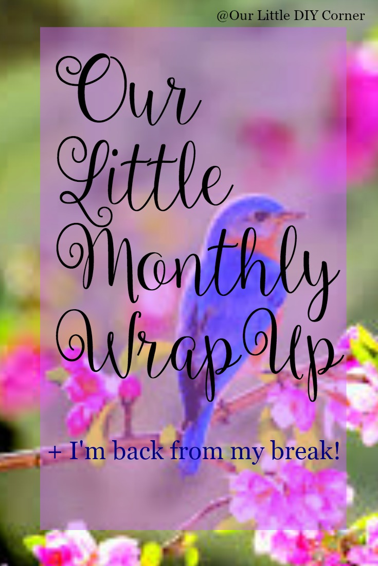 Our Little Monthly Wrap-Up